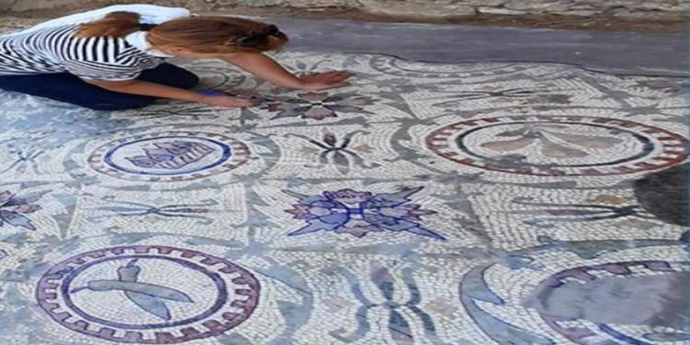 اكتشاف أثري جديد يثير جدلا حول أصل نبتة الفلفل في تونس