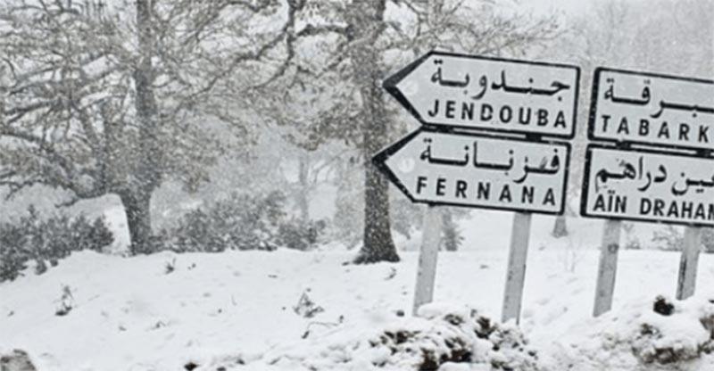 لجان مجابهة الكوارث تعلن عن اجراءات عاجلة إثر نزول الثلوج