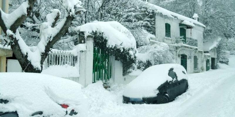 Evacuation de 116 véhicules bloqués sous la neige à Ain Draham