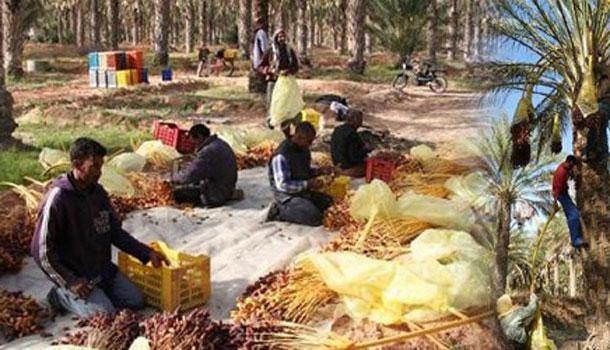 Les habitants de Jemna décident de retirer tout leur argent des banques tunisiennes