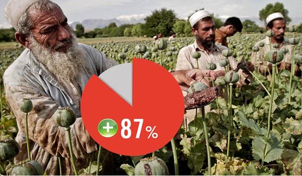 La récolte d'opium en hausse de 87%, un record en Afghanistan