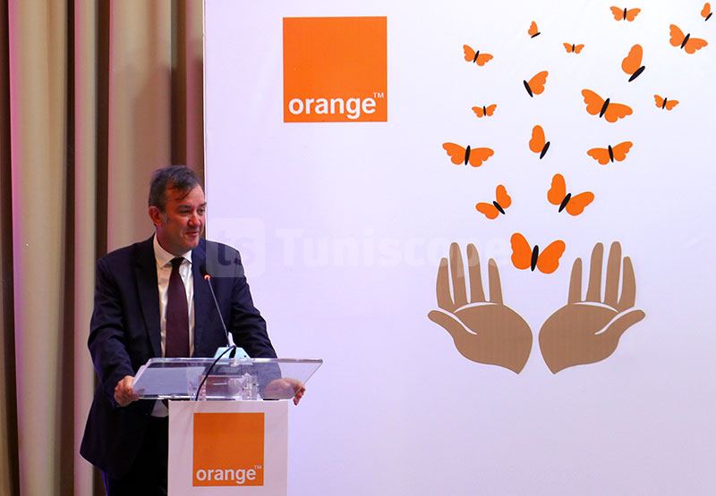 orange-060918-23.jpg