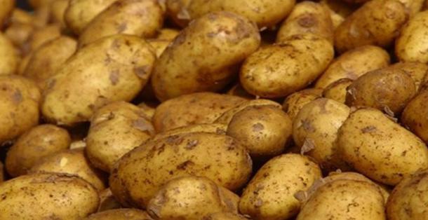 قفصة: حجز 11 طنا من البطاطا