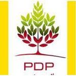 Le PDP annonce ses listes pour les élections de l'Assemblée Constituante