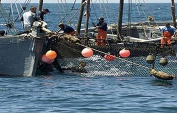 إطلاق سراح البحارة التونسيين الموقوفين في ليبيا