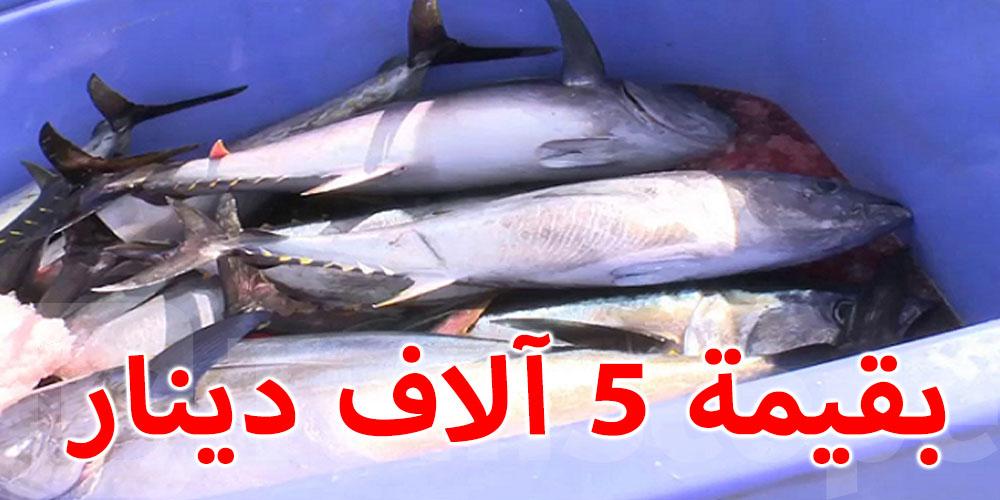 حجز 1000 كغ من أسماك التن الأحمر المحجر صيده