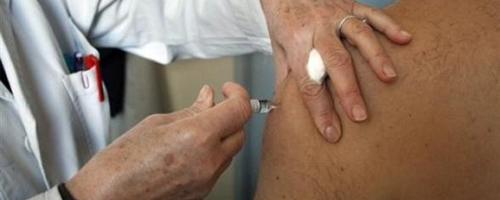 Plusieurs cas de grippe porcine signalés en Tunisie