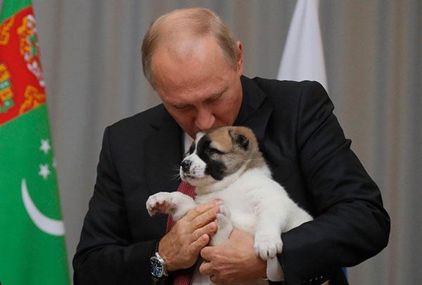 En vidéo: pour ses 65 ans, Poutine reçoit un chiot comme cadeau d'anniversaire