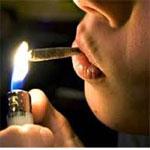 Le nouveau projet sur les stupéfiants devant l'ARP, en novembre