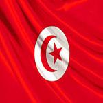 الإتحاد الافريقي يوافق على إحتضان تونس مؤسستين إفريقيتين