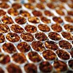 Les raisons derrière la disparition des cigarettes locales, enfin révélées