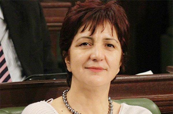 التيار الديمقراطي يحذّر من إستهداف سامية عبّو بإعتداء و يحمّل أعلى سلطة المسؤولية