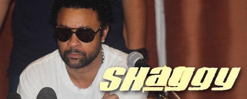 shaggy-160713-1.jpg