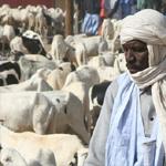 على عكس بقية الشعوب: العيد يومان في السينغال بسبب الاختلاف