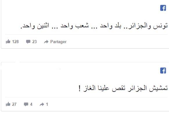Les aigles de Carthage ont gagné : La réaction des Tunisiens