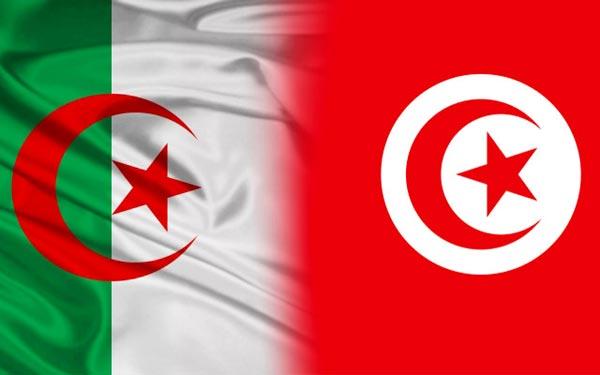تعيين الناصر الصيد سفيرا لتونس لدى الجزائر