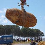 باجة :العثور على قنابل تعود للحرب العالمية الثانية بتبرسق
