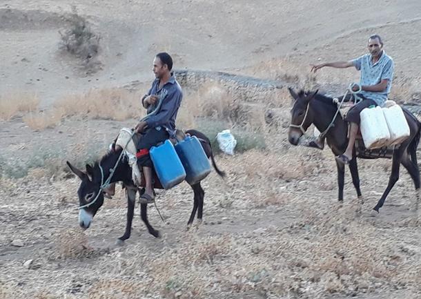 بالصور: النائب فيصل التبيني ينقل مياه الشرب لمواطني جهته على ظهر بغل