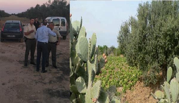 L'Etat récupère ses terres agricoles à Sousse