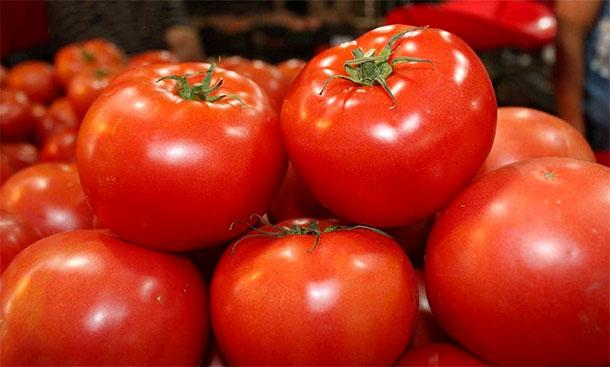 Mise en application des mesures de lutte contre les rejets des unités de transformation de tomate à Sidi Madhkour