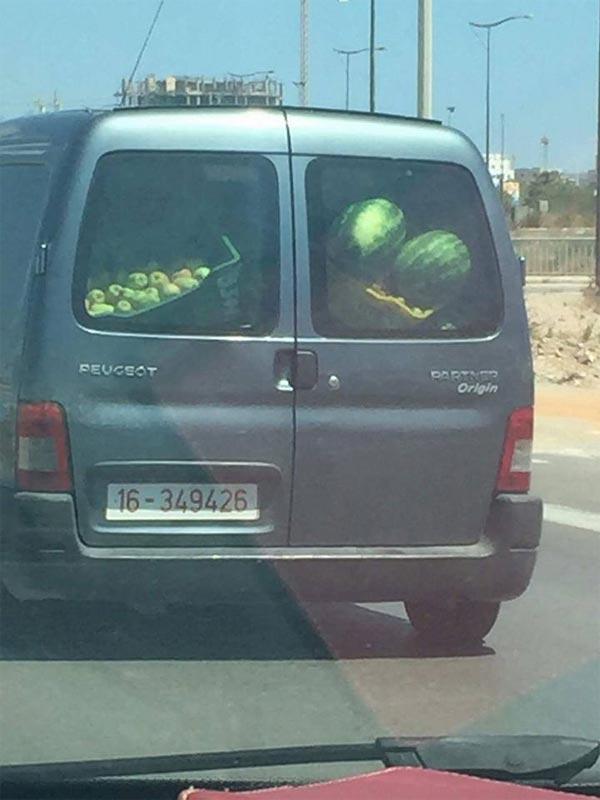 Photo du jour : Après le véhicule de la poste, une voiture du ministère du tourisme transporte des pastèques