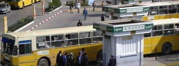 وزارة النقل: اصدار 'الكتاب الأبيض' للنهوض بالقطاع