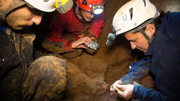 اسبانيا: عمال حفريات اكتشفوا كنوزاً أثرية وهذا ماقررته السلطات المحلية