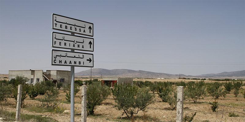 فريانة: ضبط 3 سوريّين مُجتازين للحدود التونسية الجزائرية خلسة