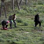 الجزائر: منع دخول 30 تونسيا بطريقة غير شرعية