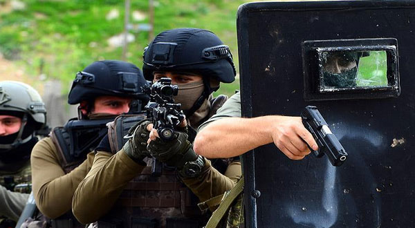 القضاء على 8 إرهابيين جنوب شرقي تركيا