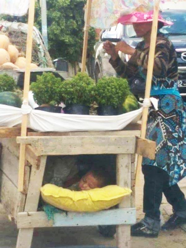 Photo du jour : Une vendeuse ambulante berce son fils dans la charrette