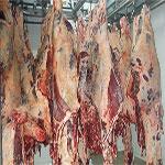 قابس : التخفيض في أسعار اللحوم الحمراء