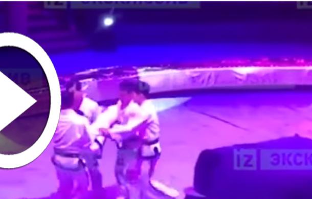 بالفيديو: لاعب جمباز يكسر عنقه بدلاً من تحقيق رقم قياسي