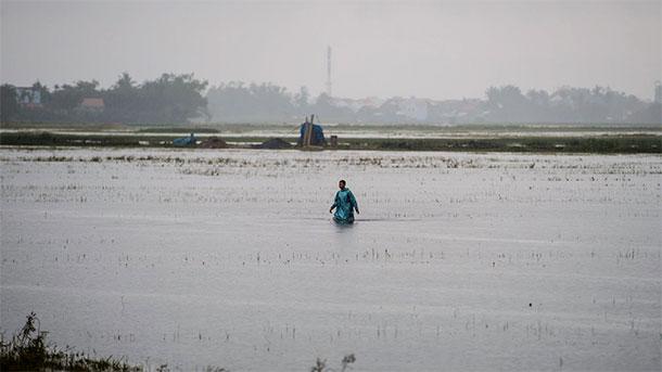 Le typhon Damrey fait près de 100 morts au Vietnam