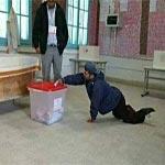Photo du Jour : Malgré son handicap, un citoyen accomplit son devoir électoral