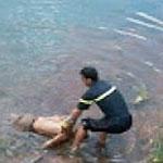 باجة:انتشال جثّة مشوهة بوادي مجردة