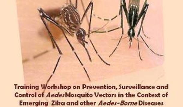 Zika : L'Institut Pasteur organise un workshop pour former les cadres médicaux de la santé de la région EMRO