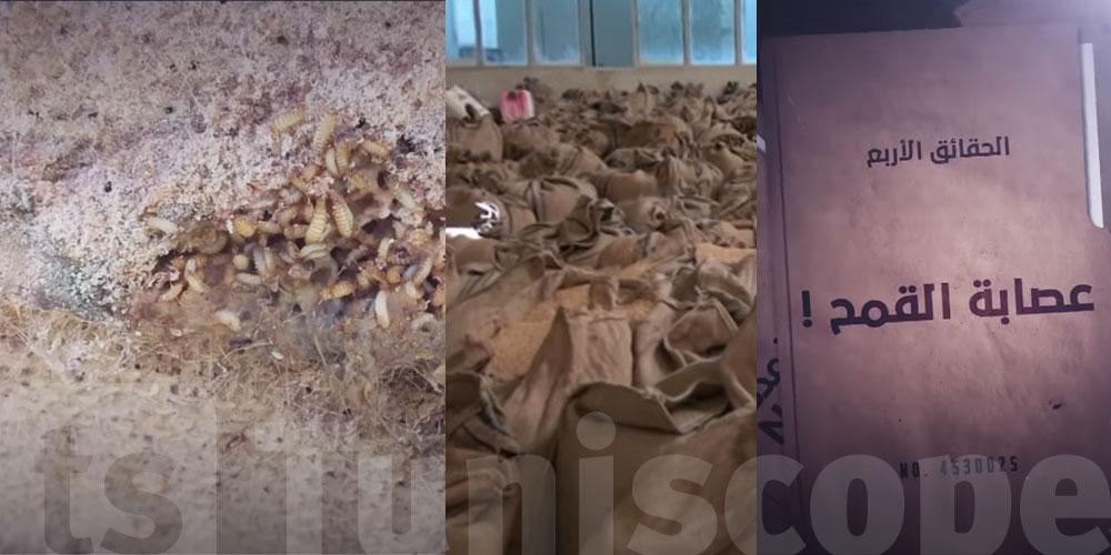 بالفيديو.. الحقائق الأربع يكشف معطيات خطيرة عن ''عصابة القمح''