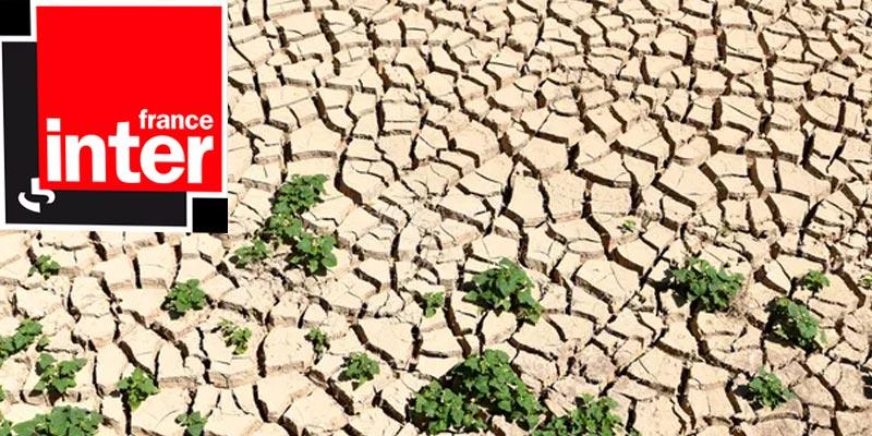 Tunisie, le choc du changement climatique