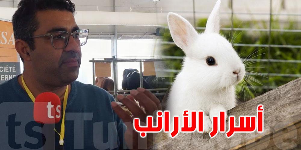 بالفيديو: هاو علاش لحم الأرانب فيه رائحة خايبة